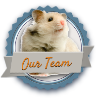 Veterinarian in Nepean, ON | Lynwood Animal Hospital